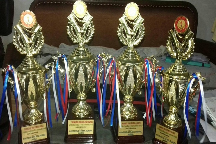 D A V M Public School-Awards