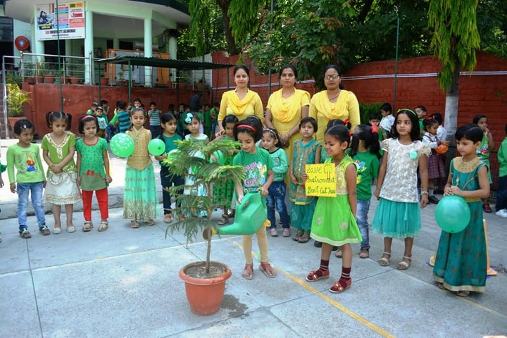 D A V Public Senior Secondary School-Planting Tree