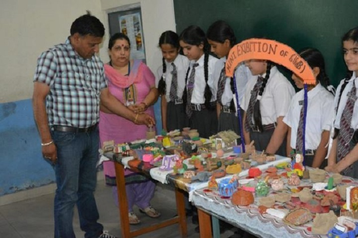 D A V Public Senior Secondary School-Exhibition