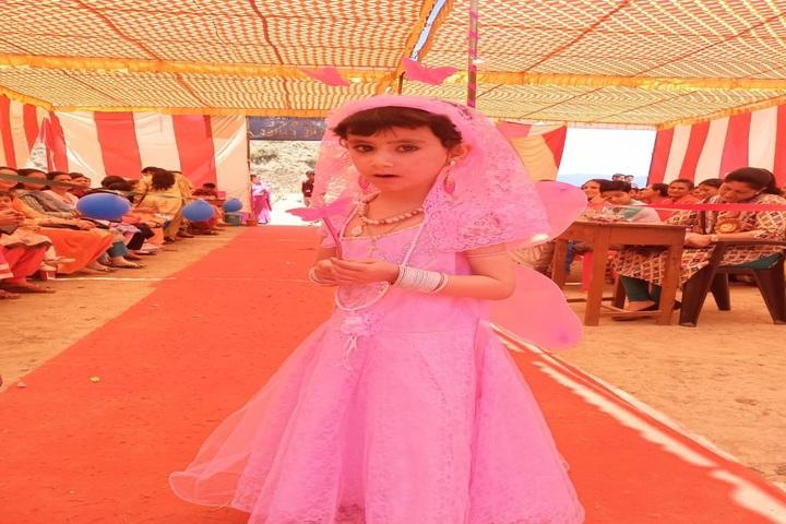 DAV Centenary Public School-Fancy Dress