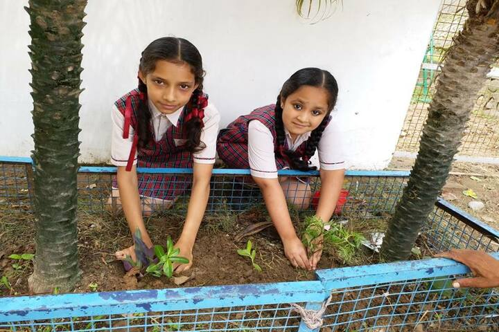 DAV Public School-Plantation