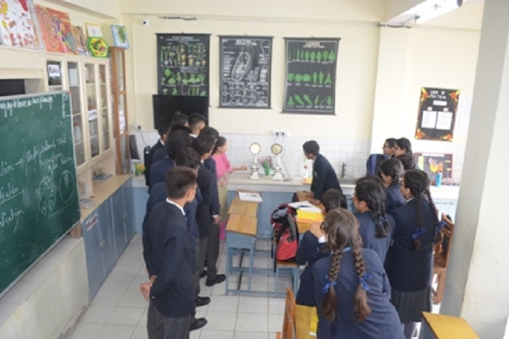 Dayanand Public School-Biology-Lab