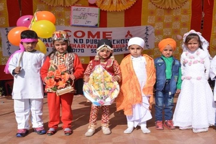 Dhauladhar Nirmla Devi Senior Secondary School-Fancy Dress