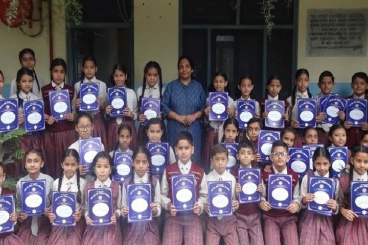 Dr Devi Chand DAV Public School-Achievements