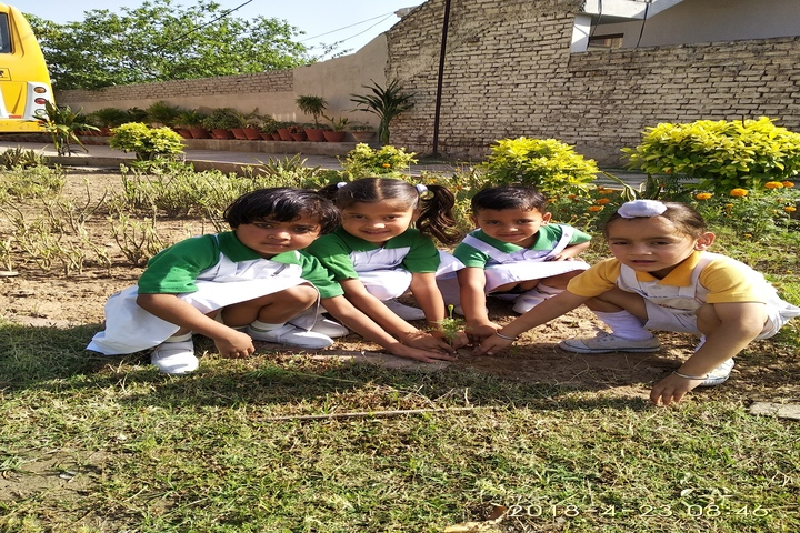 Golden Valley Public School-Tree Plantation