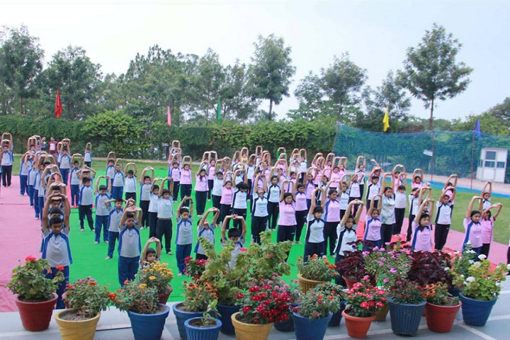 Him Academy Public School-Yoga