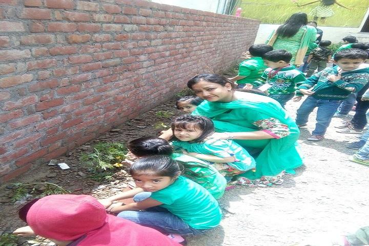 Ivy International School-Tree Plantation