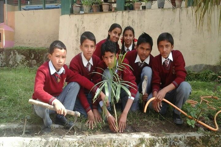 Jeori Public School-Tree-Plantation