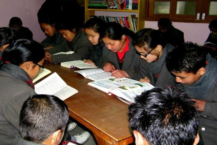 Pine Dale Public School-Library