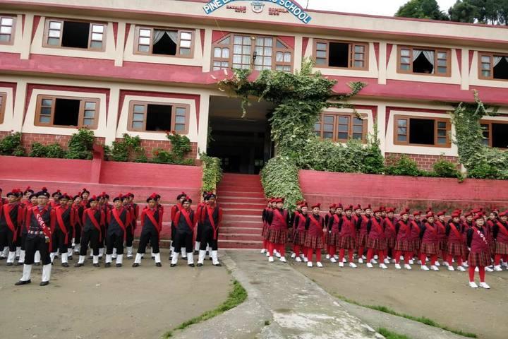 Pine Dale Public School-NCC