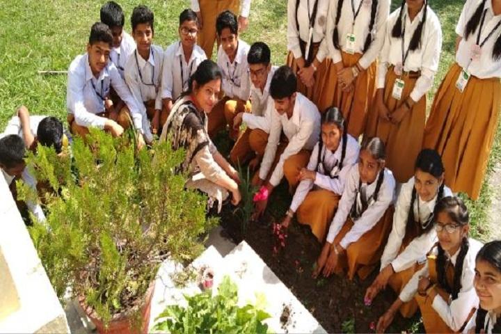 Maharishi Vidya Mandir Public School-Students