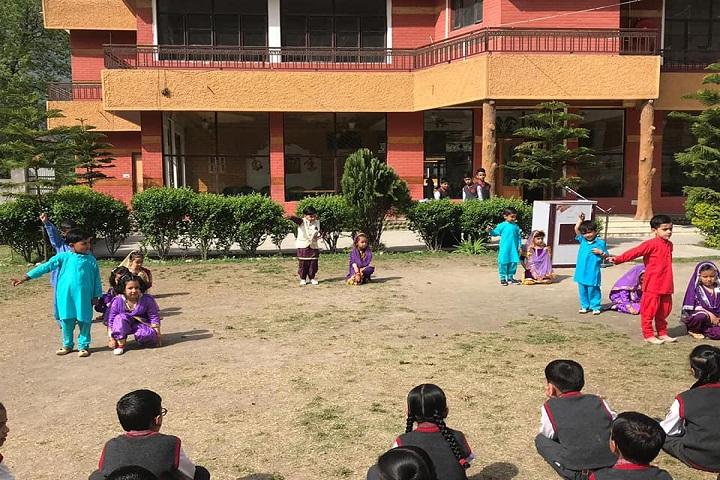 Maxx International School-Play-Ground