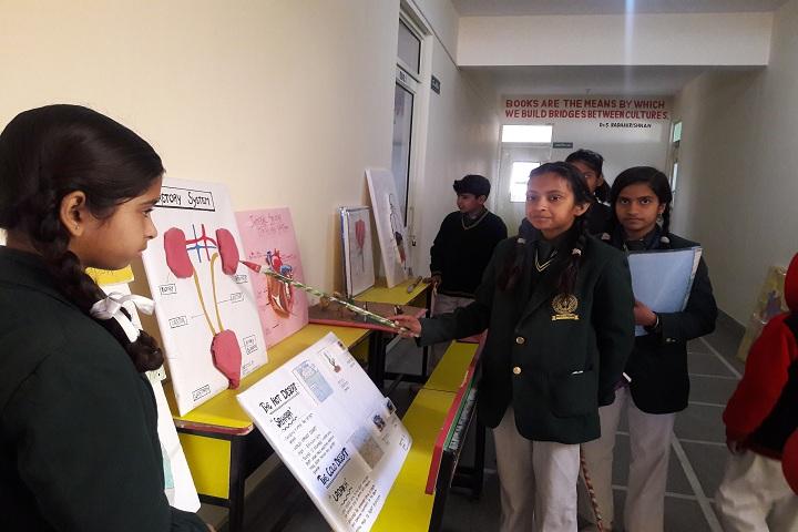 New Gyan Dham Public School-Science-Exhibition