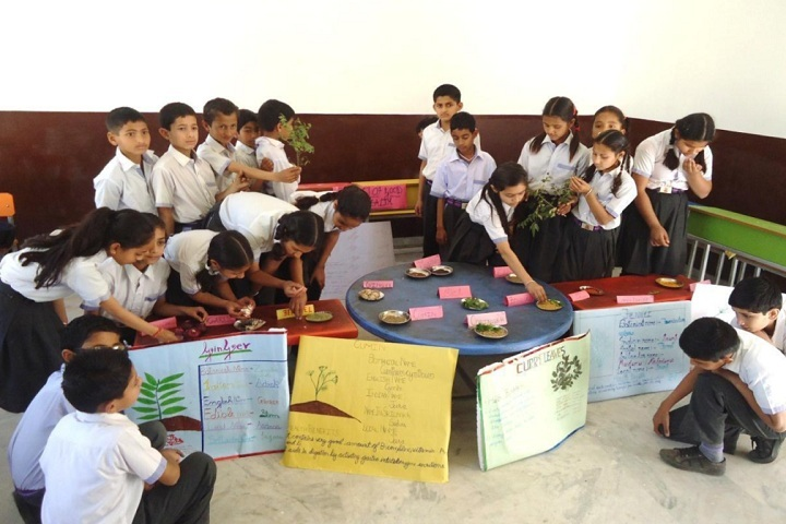 RK International School-Activities