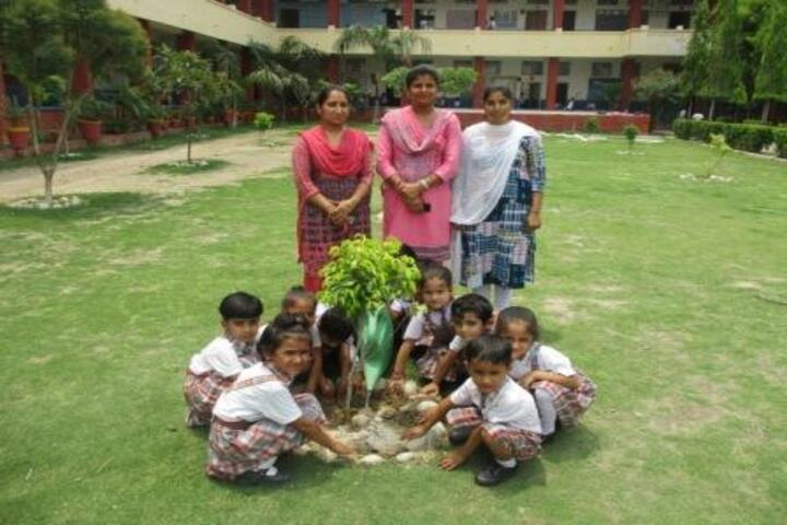 Rudra International School-Tree Plantation