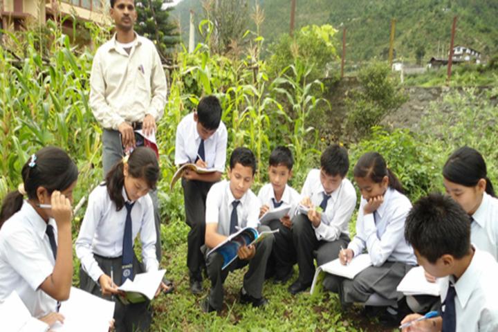 Roopland Public School-Field activities