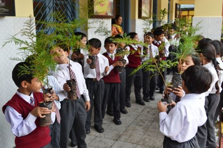 St  Marys  Convent School-Environmental Day