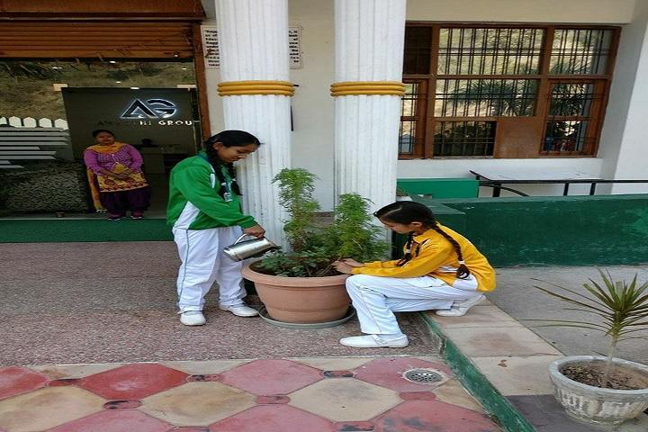 The Gurukul International School-Others plantation