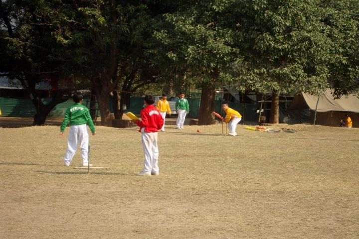 The Gurukul International School-Sports cricket