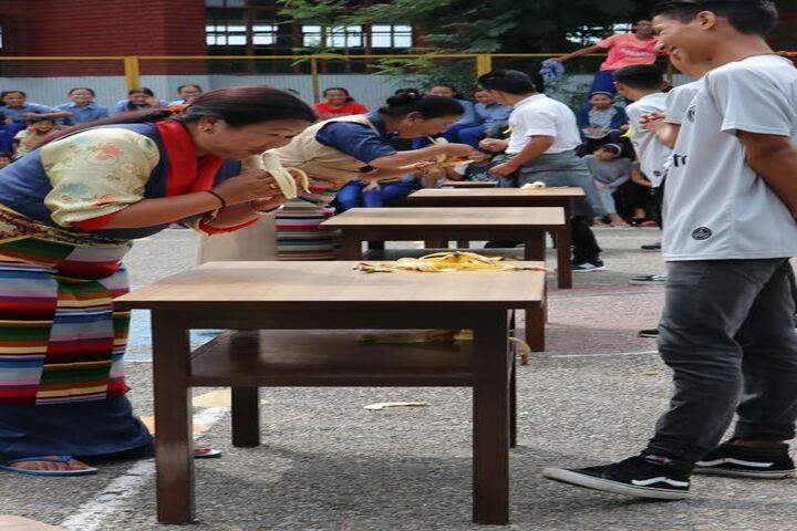 Tibetan Childrens Village School-Games