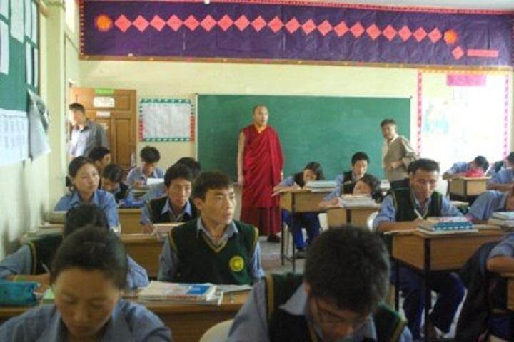 Tibetan ChildrenS Village Senior Secondary School-Activity
