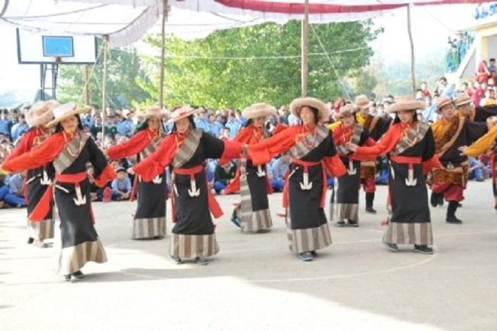 Tibetan ChildrenS Village Senior Secondary School-Cultural Fest
