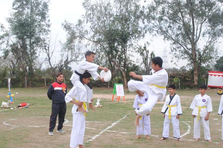 DCM Public School-Karati