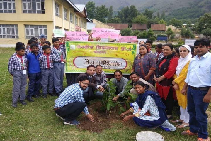 Kendriya Vidyalaya no 3-Tree Plant