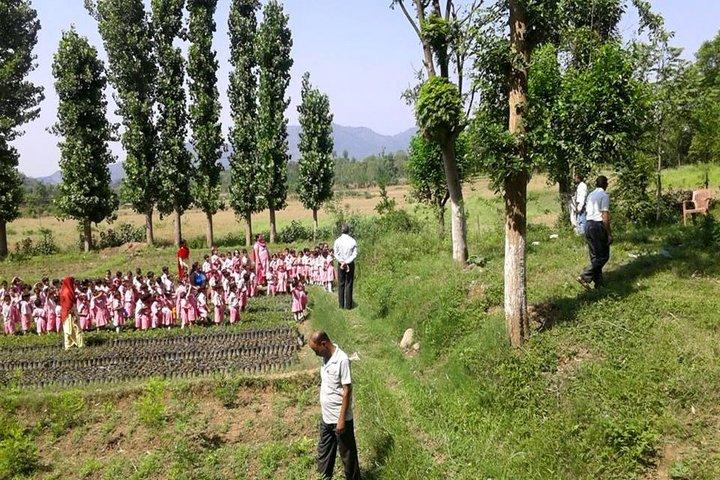 Sant Bal Yogeshwar Bhartiya Vidya Mandir Dadwara-Tour