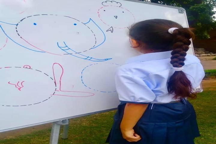 Springdales School-Drawing