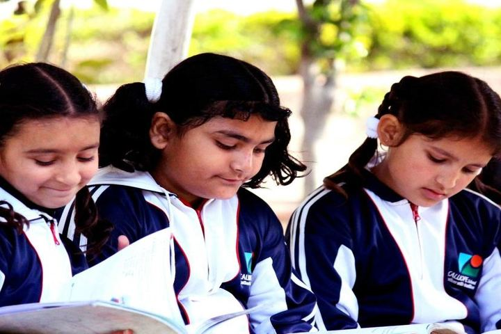 The Calliope School-Kids