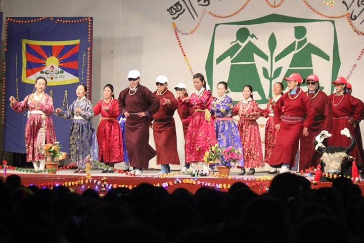 The Tibetan Sos Childrens Village School-Others programme