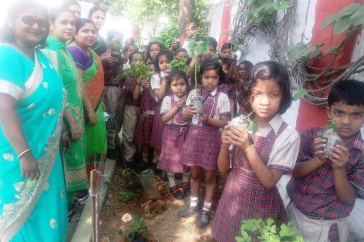 Agrasen Dav Public School-Tree Plant