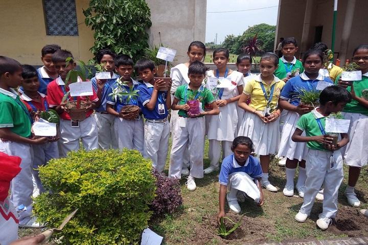 Jawaharlal Nehru Memorial School-Plantations