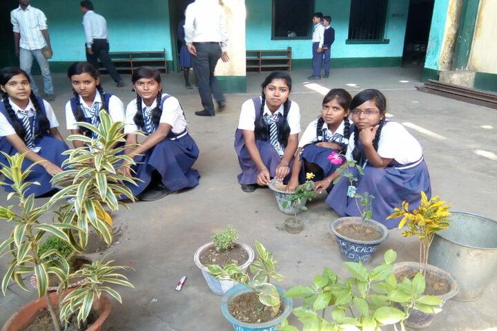 Jitpur Academy-Tree Plantation