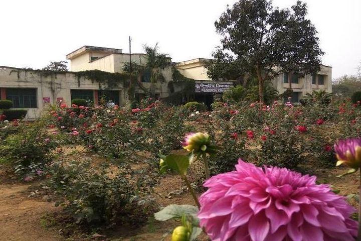 Kendriya Vidyalaya No 3-Garden
