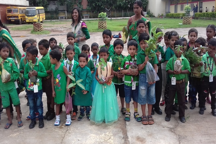 Shradhanand Bal Mandir Senior Secondary School-Plantation