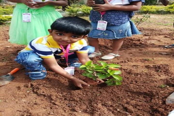 Anand Shiksha Kendra-Tree Plantation