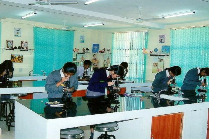 Army Public School-Lab
