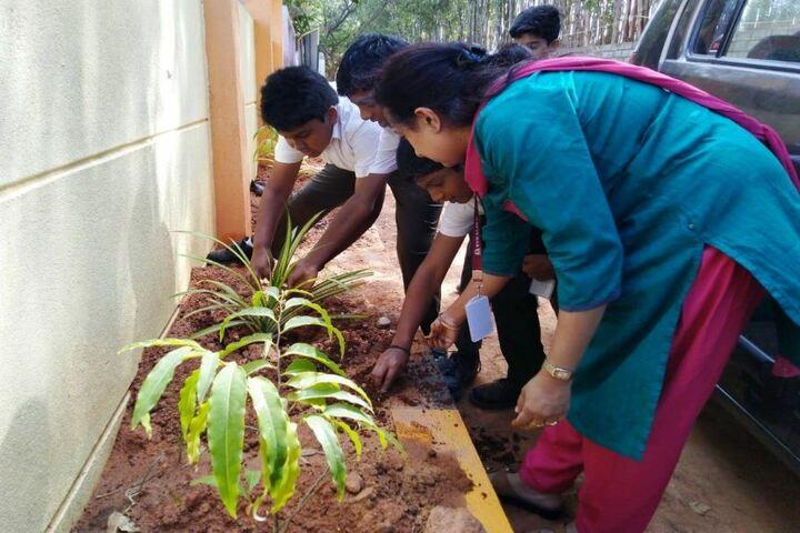 Bvm Global School-Environment Day
