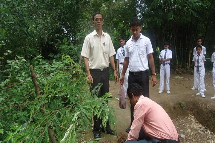 Biswanath Jnan Bharati School-Tree Plantation