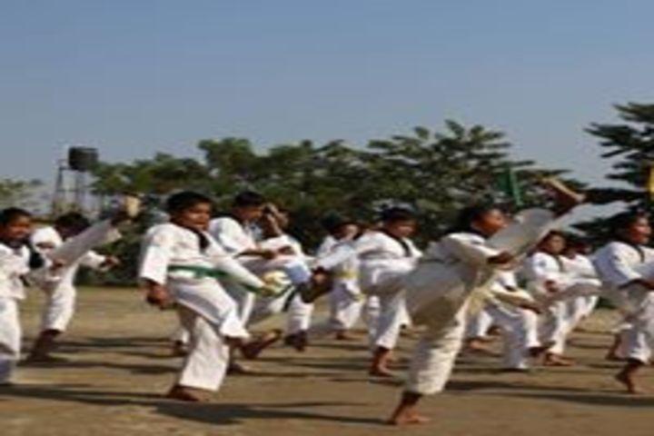 Brahmaputra Valley English Academy - karate