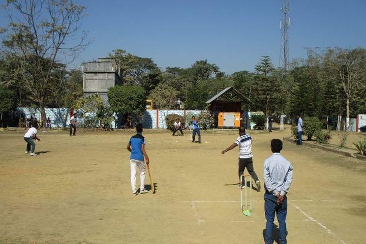 Central public school - cricket