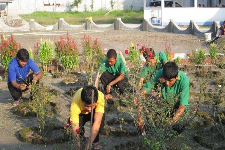 De pauls public school - gardening