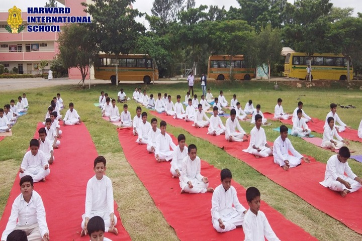 Harward International School-Yoga