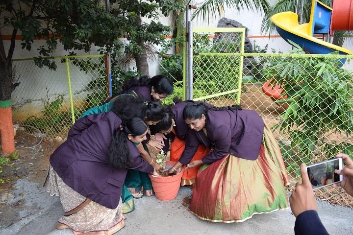 Jaihind International School-Plantations
