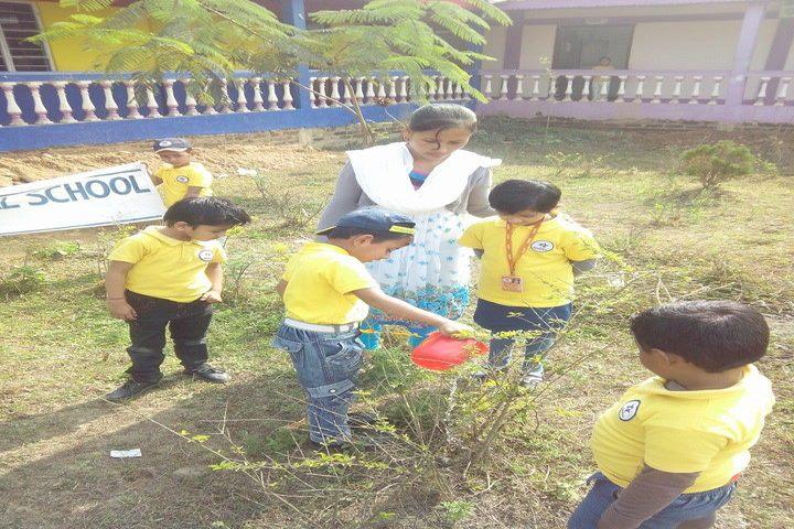 Global public central school - go green