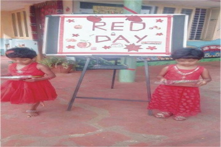 MEC Public School-Red Day