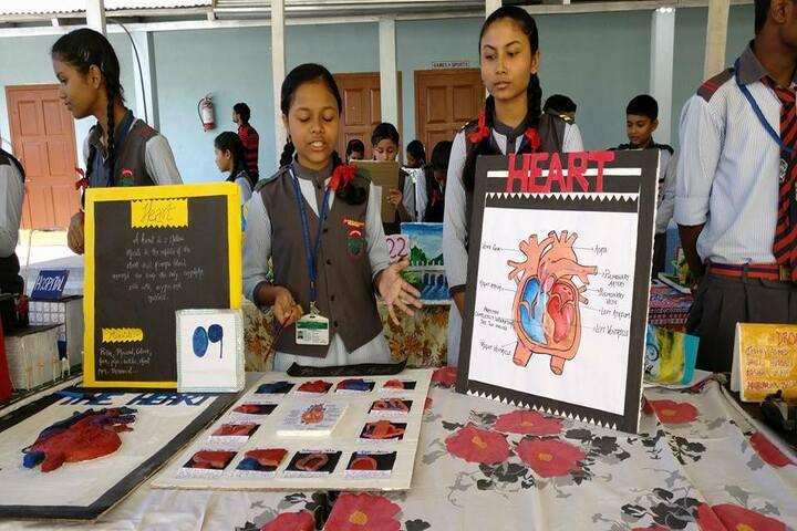 Green meadows school - science exhibition