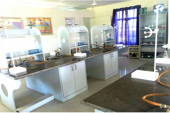 Holy Brook Senior Secondary School-Chemistry Lab